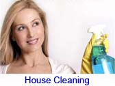 house cleaning link